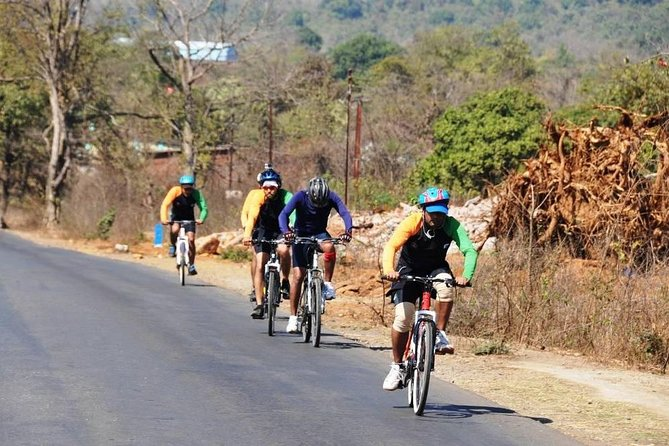 Guided Bicycle Tour of Bangalore's Countryside