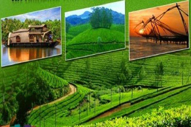 Lush Malabar Coast And Colorful Kerala - A 6 Day Private Tour