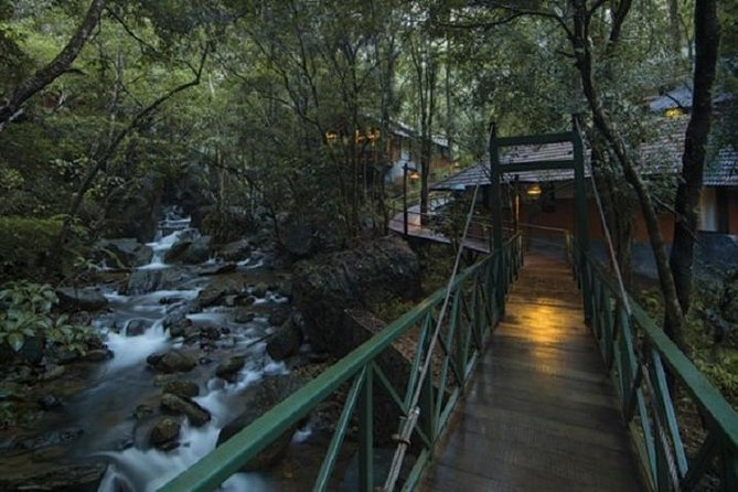 A Unique Rainforest Escape - 3 Nights At Vythiri Resort From Cochin With Private Transfers photo 3