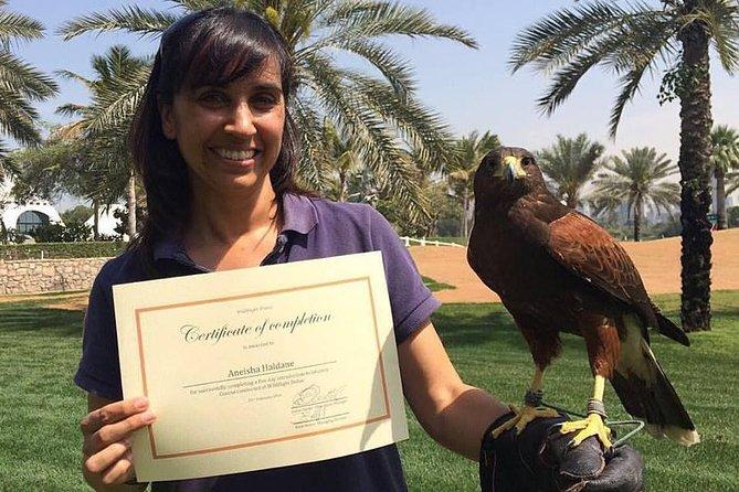 Dubai Falconry School