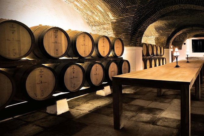 Private Tour Full Day in Évora with wine tasting: in Mercedes