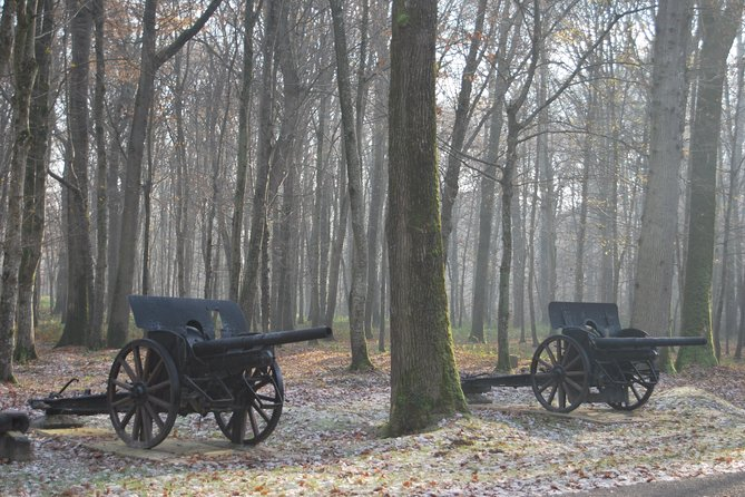 Private WWI Day Trip from Paris: Aisne-Marne Battlefields, Belleau Wood & Museum of the Great War