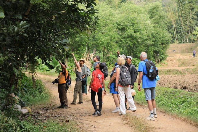 Inle: Full Day Trekking and Boat Adventure Tour Including Lunch