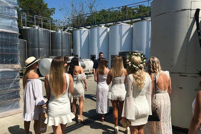 Private Half Day Wine Tour from Gold Coast to Tamborine Mountain