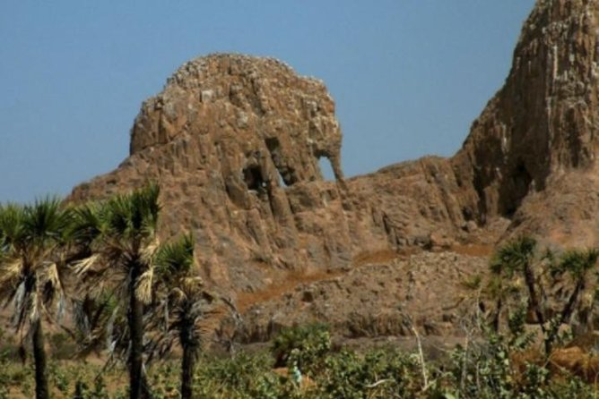 N'Djamena - Chari River - Elephant Rock - Douguia Tour - 2 Day Tour