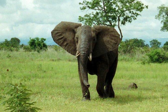 Maputo Special Reserve - 2 Days