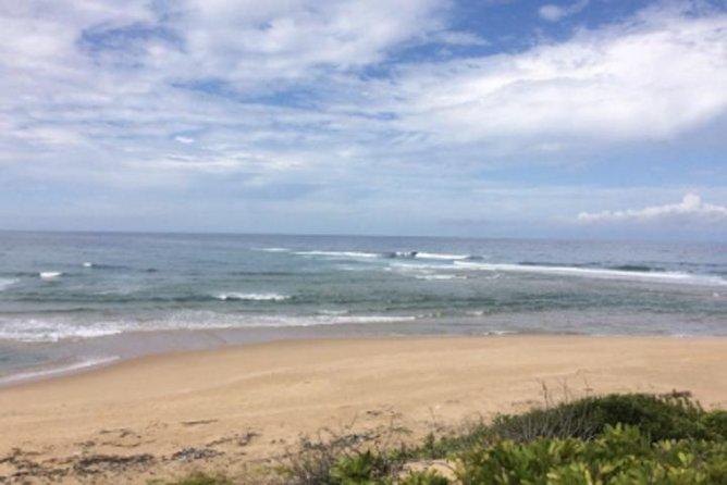 Surfing - Milibangalala - Maputo Special Reserve - 7 Days