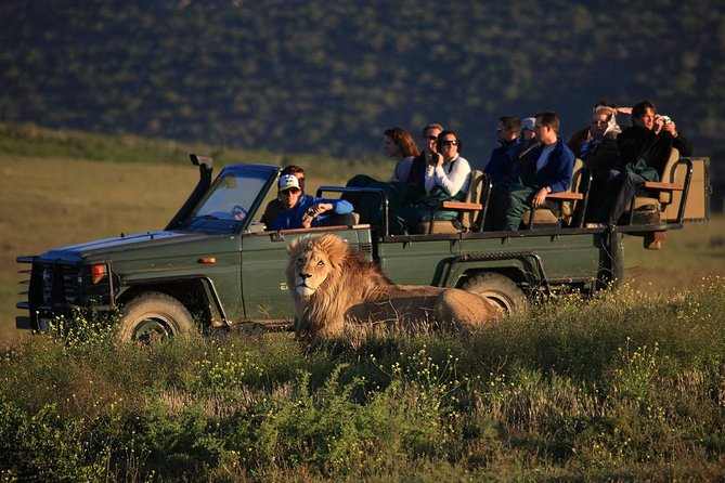 2 Day Safari Experience from Cape Town