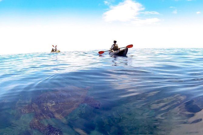 Kauai Sea Kayaking 10 mile tour - Na Pali Iki (Polihale to Milolii)
