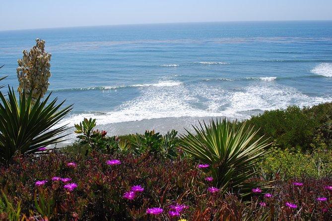- San Diego, CA, ESTADOS UNIDOS