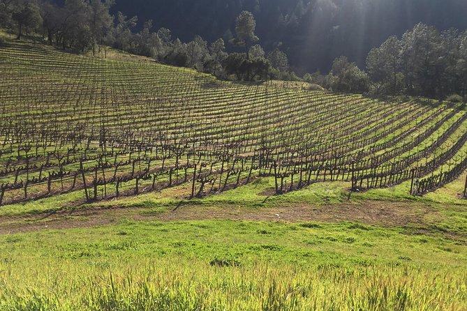 Privérondleiding door wijn van Napa en Sonoma