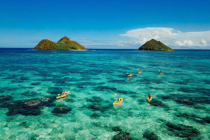 Twin Islands Guided Kayak Tour