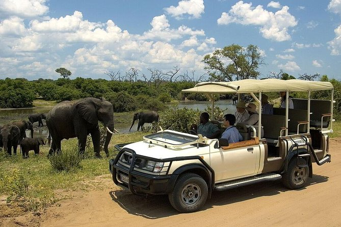 Chobe day trip from Livingstone (Zambia)