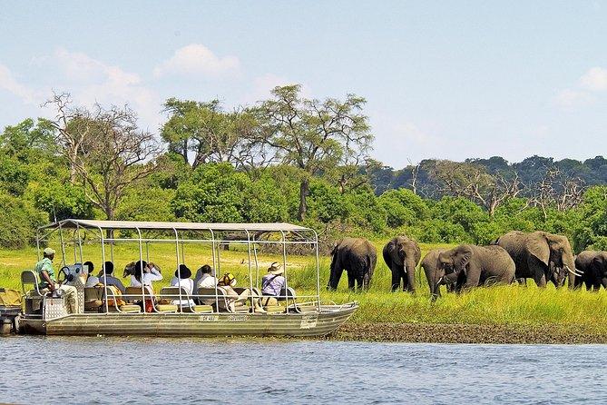 Chobe Day Trip from Victoria Falls (Zimbabwe)