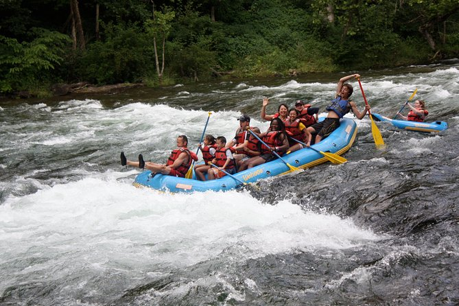 Watauga Family-Friendly River Rafting Adventure