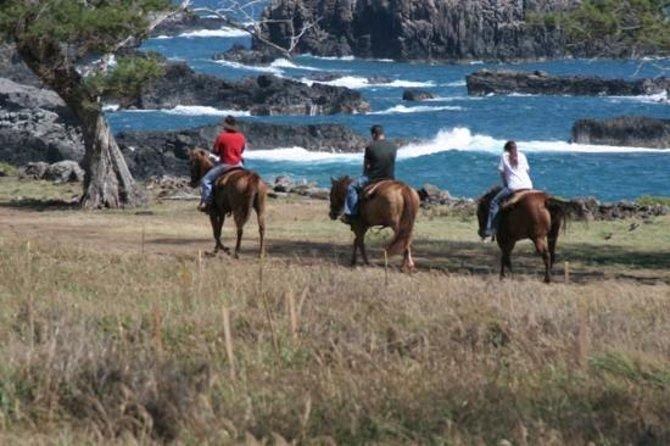 Excursão com Passeio a Cavalo em Maui