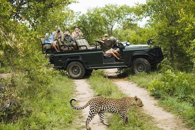 Safari at Wasgamuwa National Park