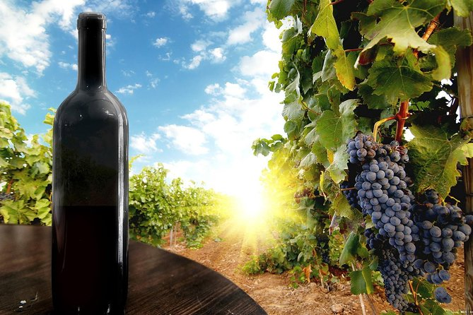 Full-Day Wine and Culture Private Tour By Levan Tours