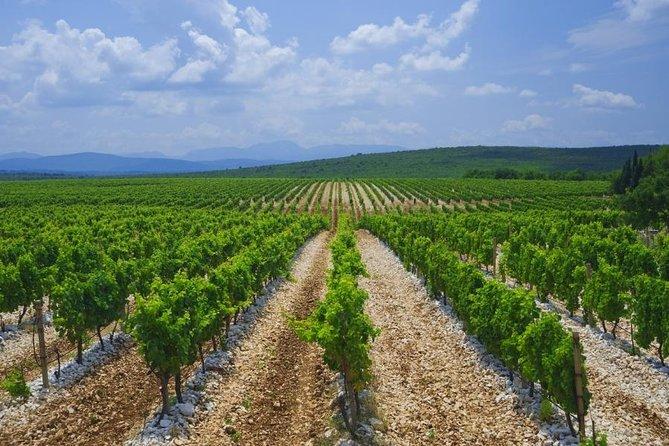 Wine Wanderlust, Herzegovinas Most Famous Wines Tour