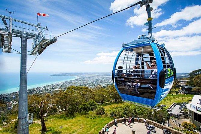 Arthurs Seat Eagle Gondola-ticket