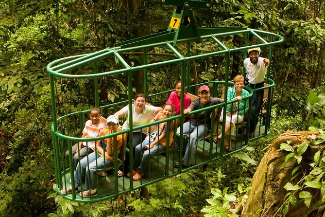 Rainforest Adventures Aerial Tram Tour