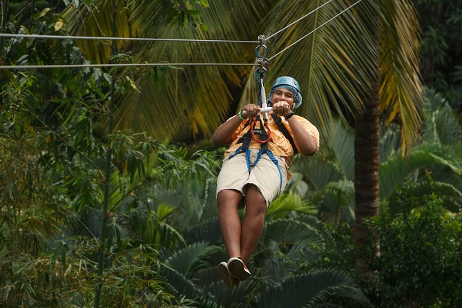 Rainforest Adventures St Lucia Aerial Tram and Zipline Tour (with Transfer*)