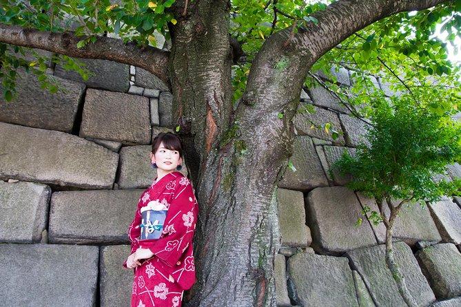 Kimono Walking Plan nær Osaka Castle