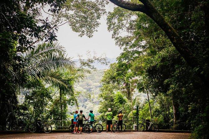 Rio de Janeiro: 5-hours Morning Rio Jungle Bike Tour
