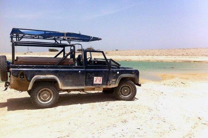 Desert Safari Tour from Tel Aviv