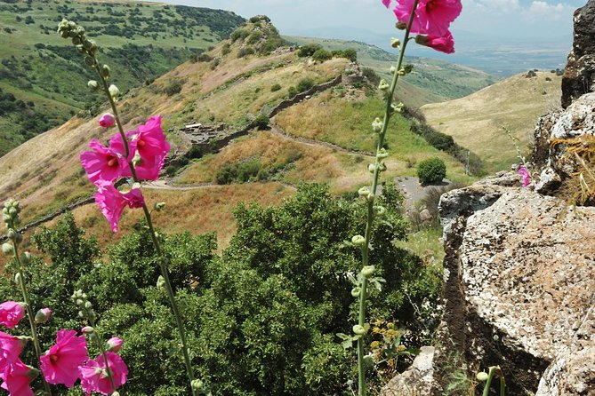 Explore the Golan Heights National Park