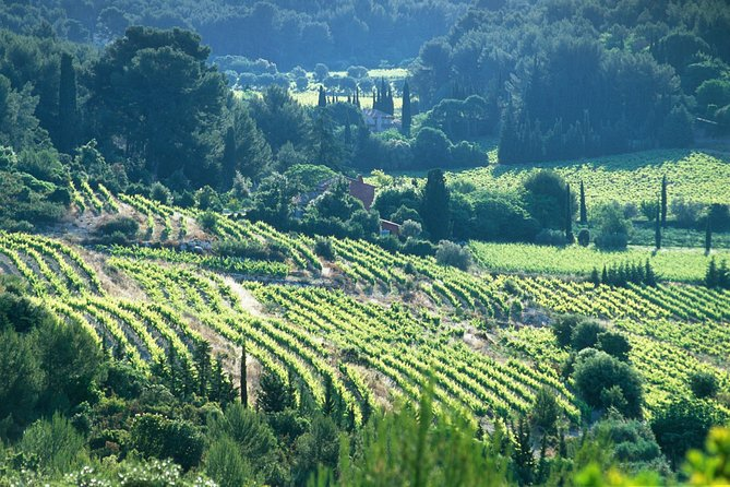 Half day Wine Tour in Bandol & Cassis from Aix en Provence