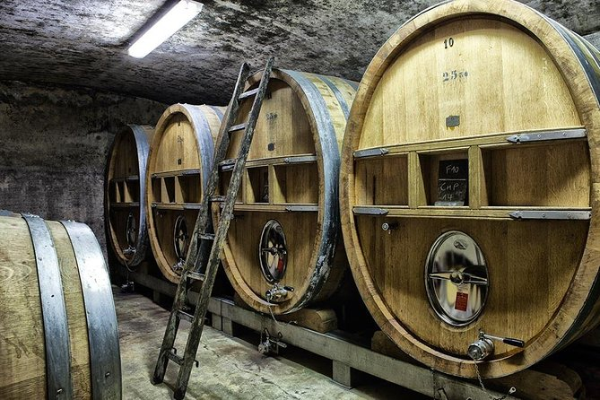 Full-day Wine Tour around Bandol & Cassis from Marseille