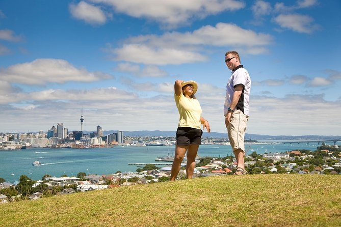 Private Auckland Half Day Tour