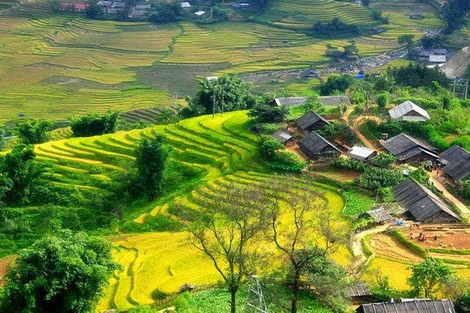 Sapa Village Trekking 1 dia de viagem