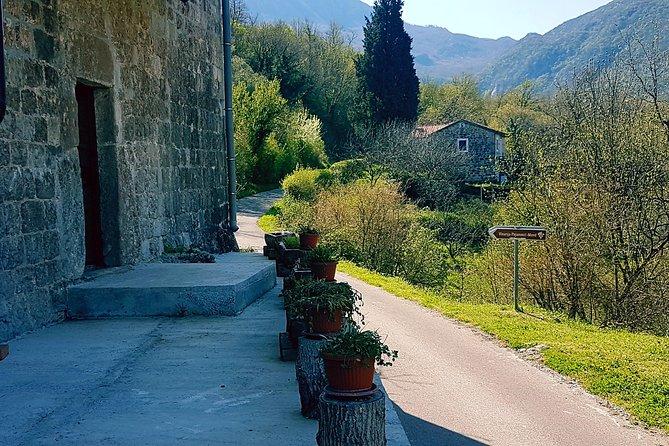 Private Wine Tour around Lake Skadar
