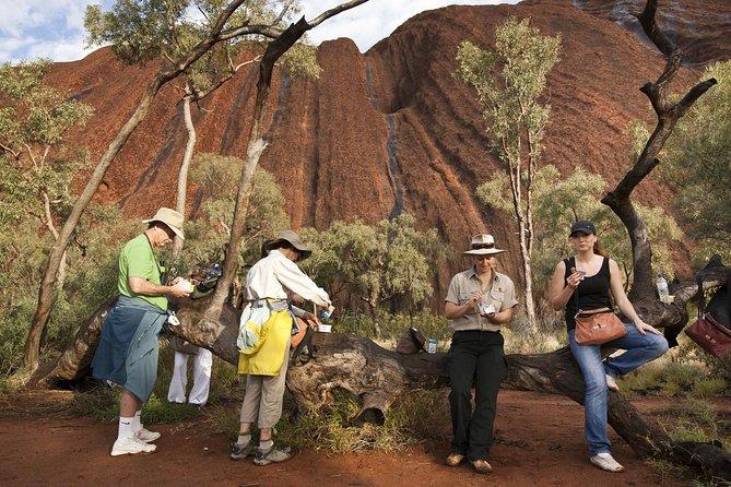 Completo paseo por la base de Uluru al amanecer con desayuno incluido
