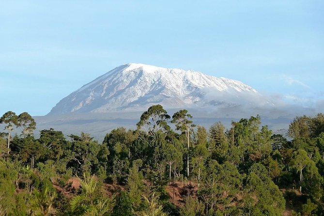 Mount Kilimanjaro Climb- Lemosho Route 8 Days
