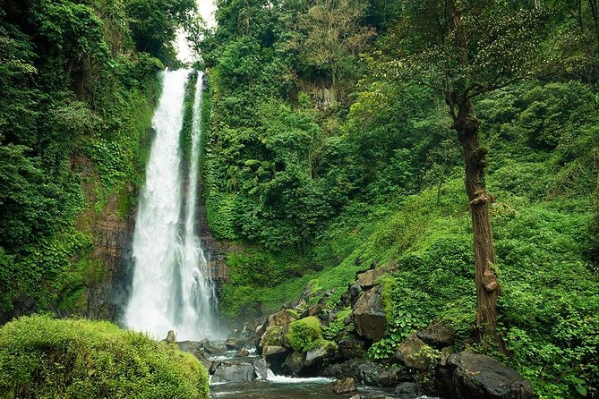 2-days tour nature and north side of Bali