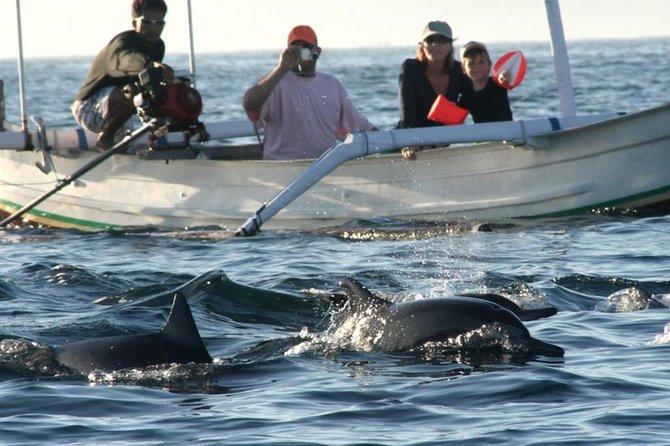 Watching Dolphin Tour at Lovina Beach