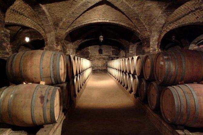 Santa Rita Winery Half-Day Tour from Santiago