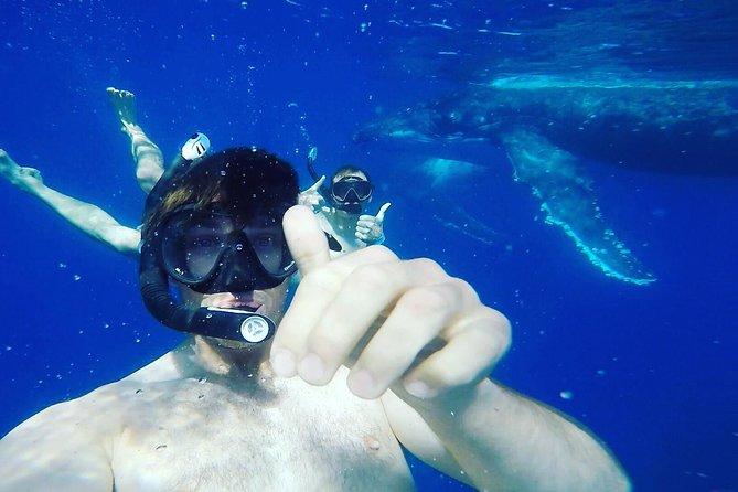 Whelfie - Selfie with a Whale