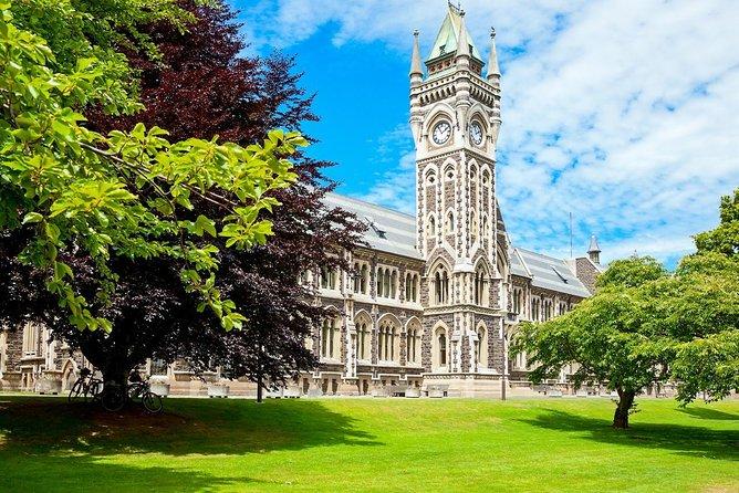 Excursão guiada de grupo pequeno para 3 horas em Dunedin City e Coastal Views