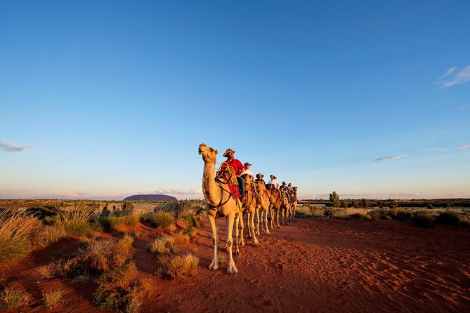 Uluru Camel Express, Sunrise, or Sunset Tours image