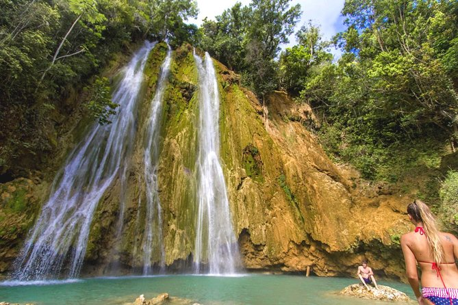 Full Day Samana Whales from Punta Cana with Waterfall, Bacardi Island & Lunch