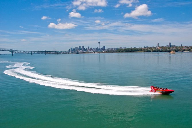 Auckland Shore Excursion: Jet Boat Ride on Waitemata Harbour