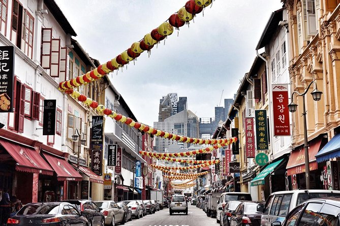 6 or 8 Hour Private Shore Excursion of Singapore by walk