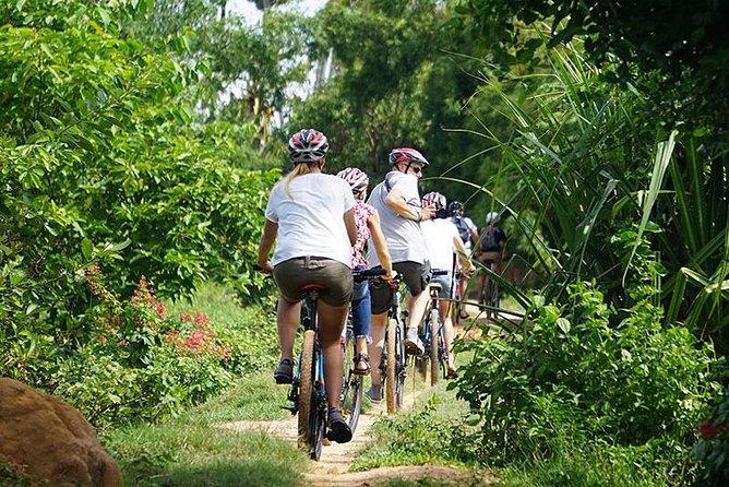 Siem Reap Cultural Full-day med cykel
