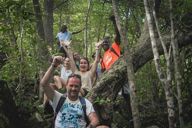 Mt Pimard Nature Trail Hike