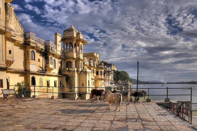 Privat tur: City Palace og Jagdish Temple i Udaipur