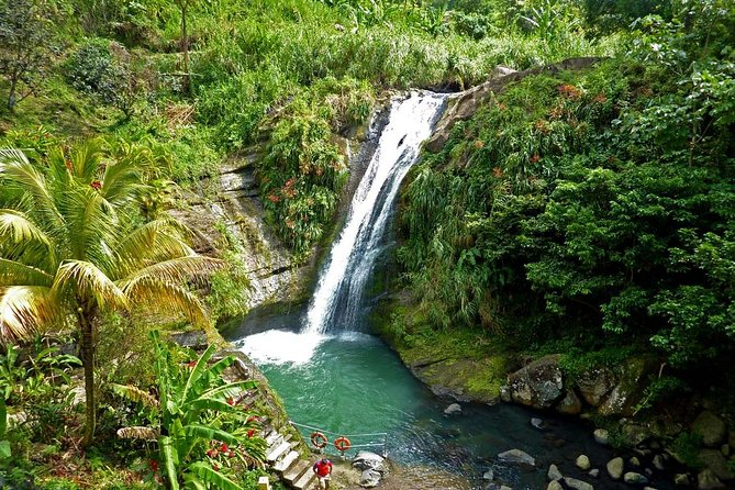 Full-Day Tour: Concord Waterfall, Chocolate Factory, Rum Distillery, Grand Etang